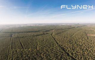 Luftaufnahme Drohne Foto Wald