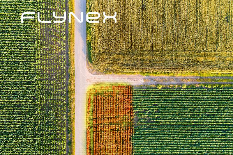 Drohne Luftaufnahme Feld
