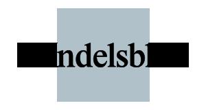 Handelsblatt News Drohne Christian Caballero
