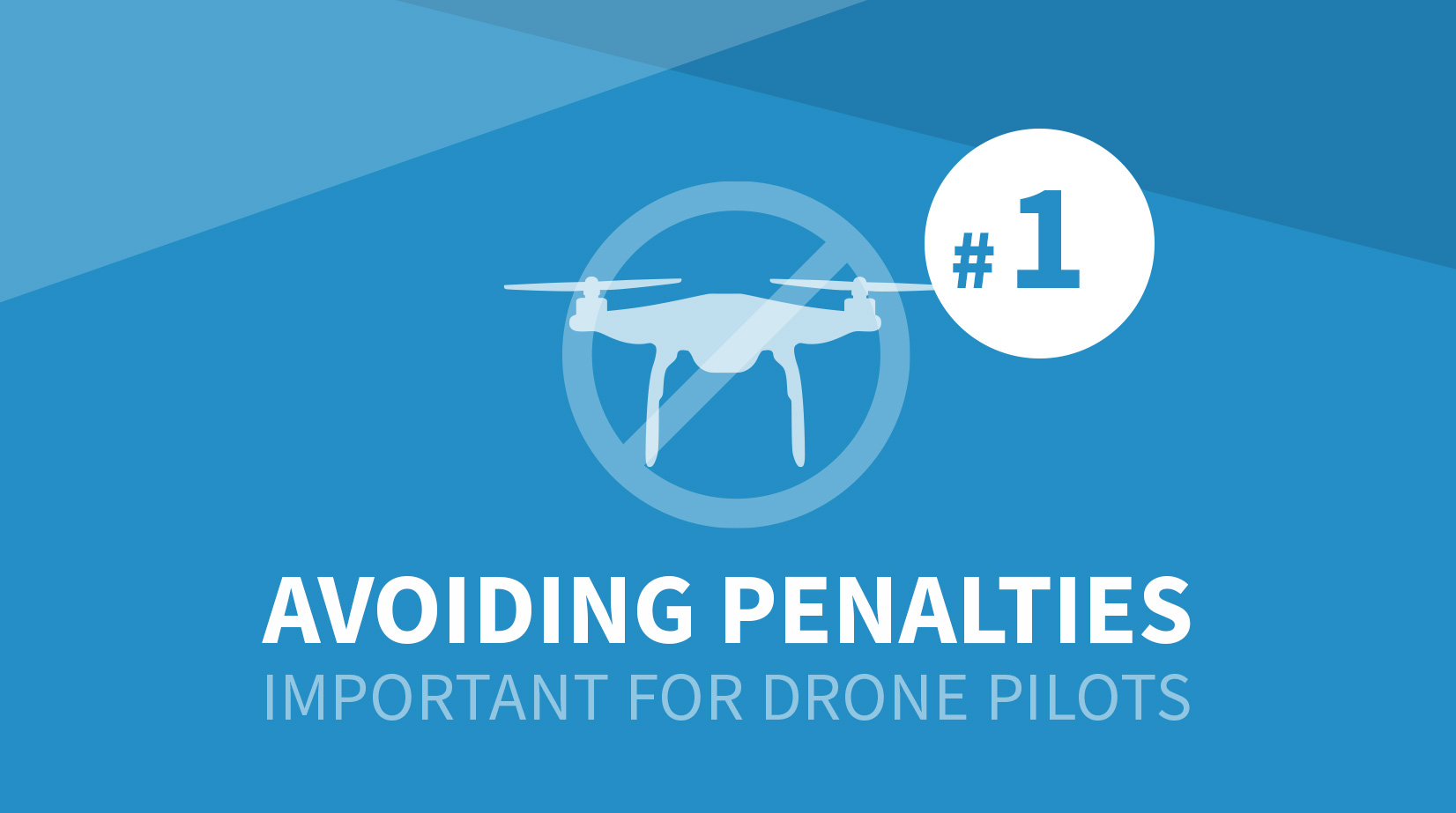 Avoiding Penalties for Drone Pilots